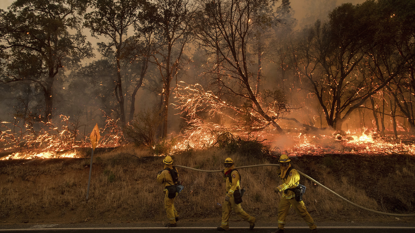 Large Wildfires Force Evacuations In California; 5,000 Firefighters ...