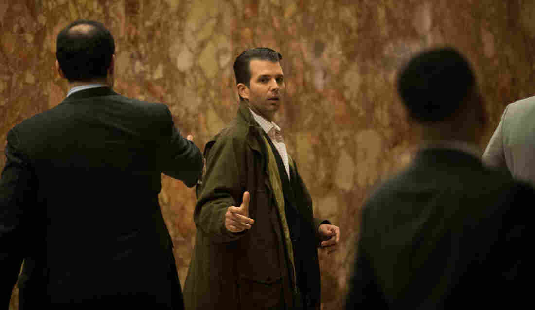 Could Donald Trump Jr. Be Charged With Treason? Short Answer: No – NPR