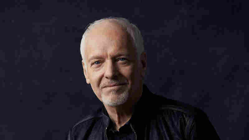 Peter Frampton Rescued A Bird, And Now There's A Song About It