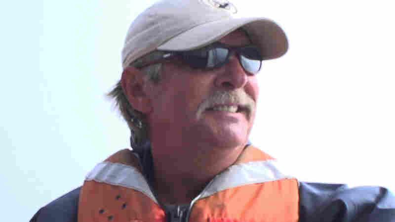 NOAA Halts Whale Disentanglement Efforts After Rescuer Dies