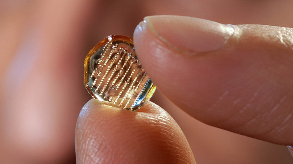 The microneedle patches developed at Georgia Institute of Technology