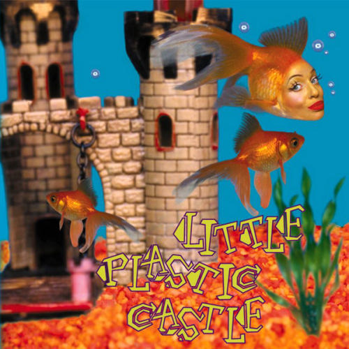 Little Plastic Castle by Ani Difranco