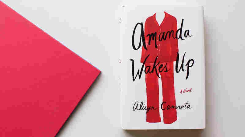 A Veteran TV News Anchor Pens A Prescient Novel In 'Amanda Wakes Up'