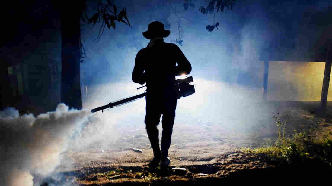 'Neglected Tropical Disease' Is Striking In Sri Lanka