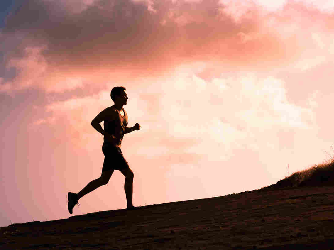 Two new studies suggest ultra running may not be so bad for your heart, says Marcelo Gleiser.