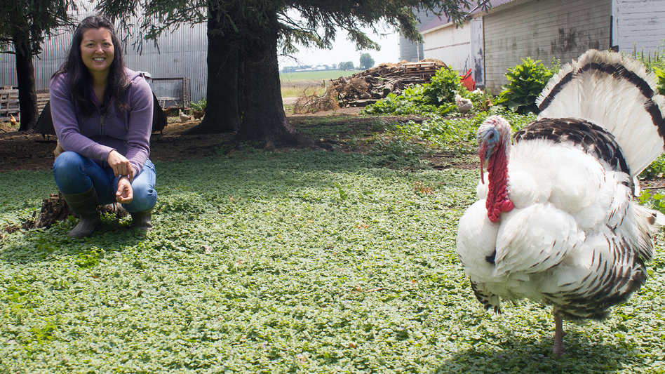 Farmer Wendy Johnson markets hogs, chickens, eggs and seasonal turkeys. She also grows organic row crops at Joia Food Farm near Charles City, Iowa.