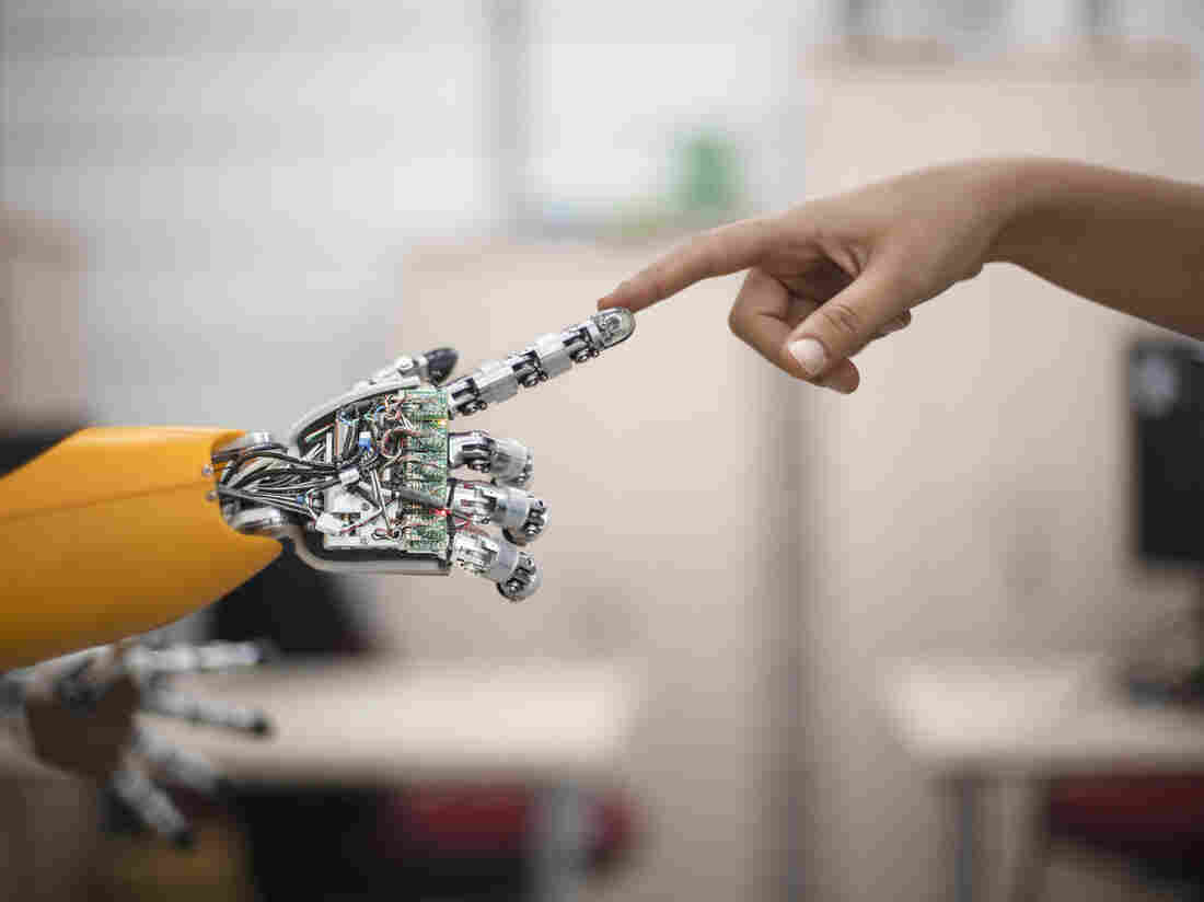 There is some positive news in robot-human relations, says Barbara J. King.