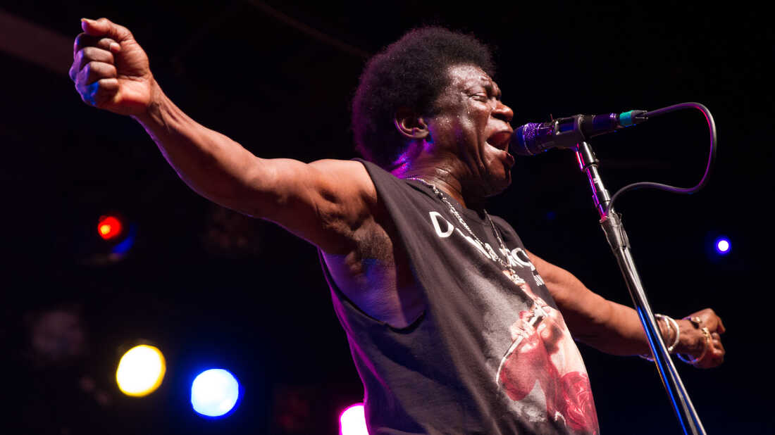 Watch Charles Bradley, Strand Of Oaks, Foxygen And More Perform Live