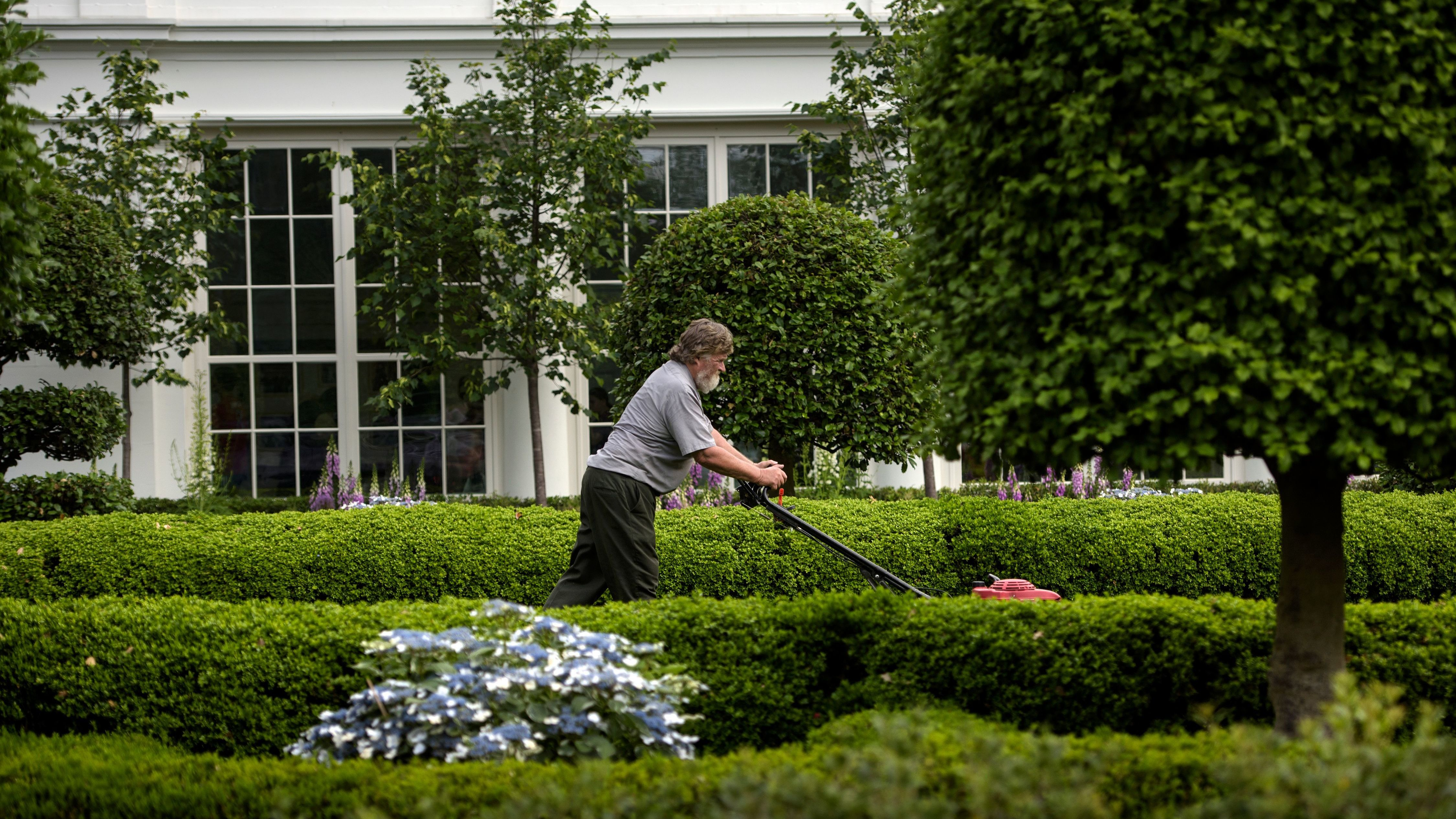 10-year-old offers to mow White House lawn - for free