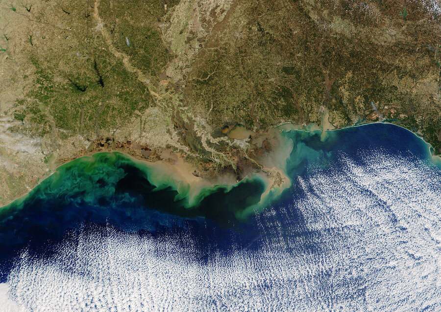 The Gulf Of Mexicos Dead Zone Is The Biggest Ever Seen  The Salt