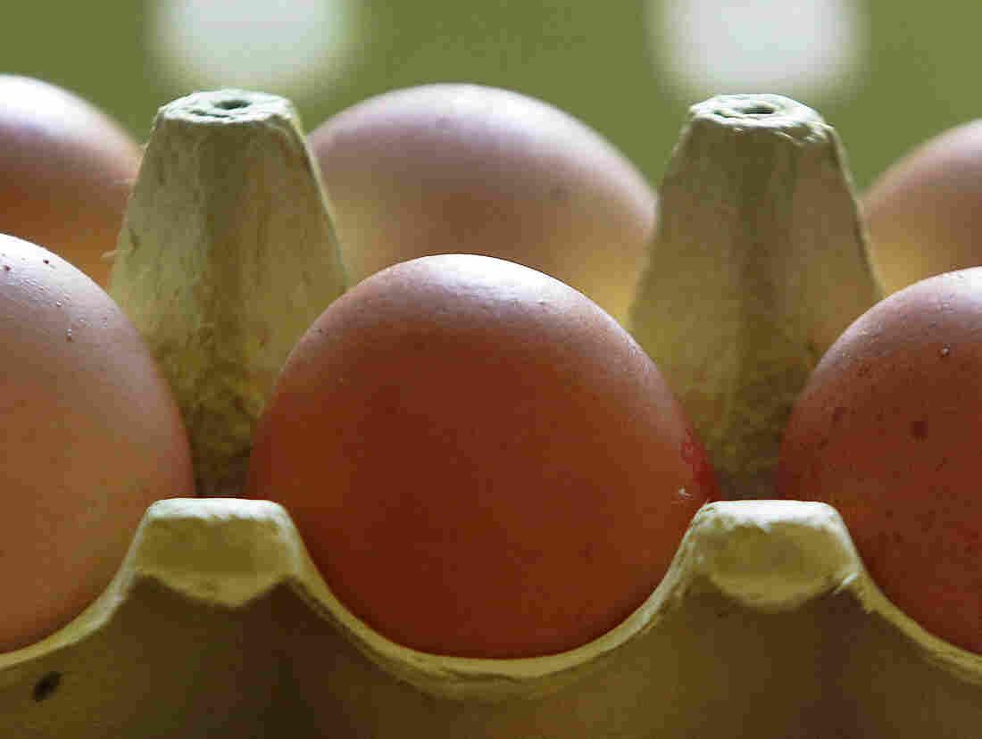 Dutch egg scandal hits 17 nations around the world