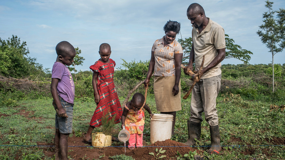 Denis Otieno is one of the villagers getting $22 each month from the charity GiveDirectly. He and his wife have used some of the money to buy cypress saplings. They hope to sell the trees for lumber in a few years to pay for their children's education. (Nichole Sobecki for NPR)