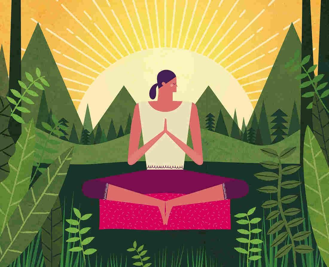 Pueden las Prácticas Budistas Nos Ayudan a Superar Los Biológicos de Extracción De ... - NPR 1