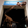 It may be the largest dinosaur ever discovered - and it finally got a name