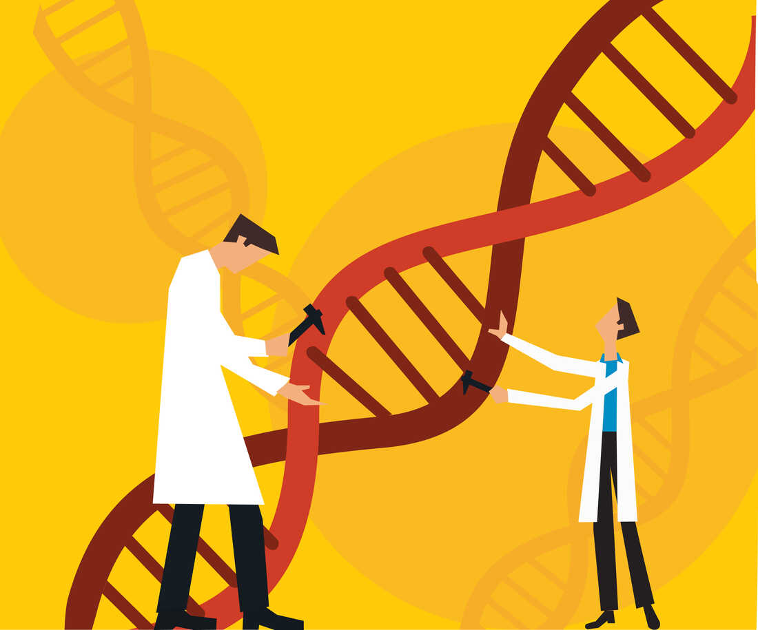 Scientists have edited out defective genes in a human embryo.