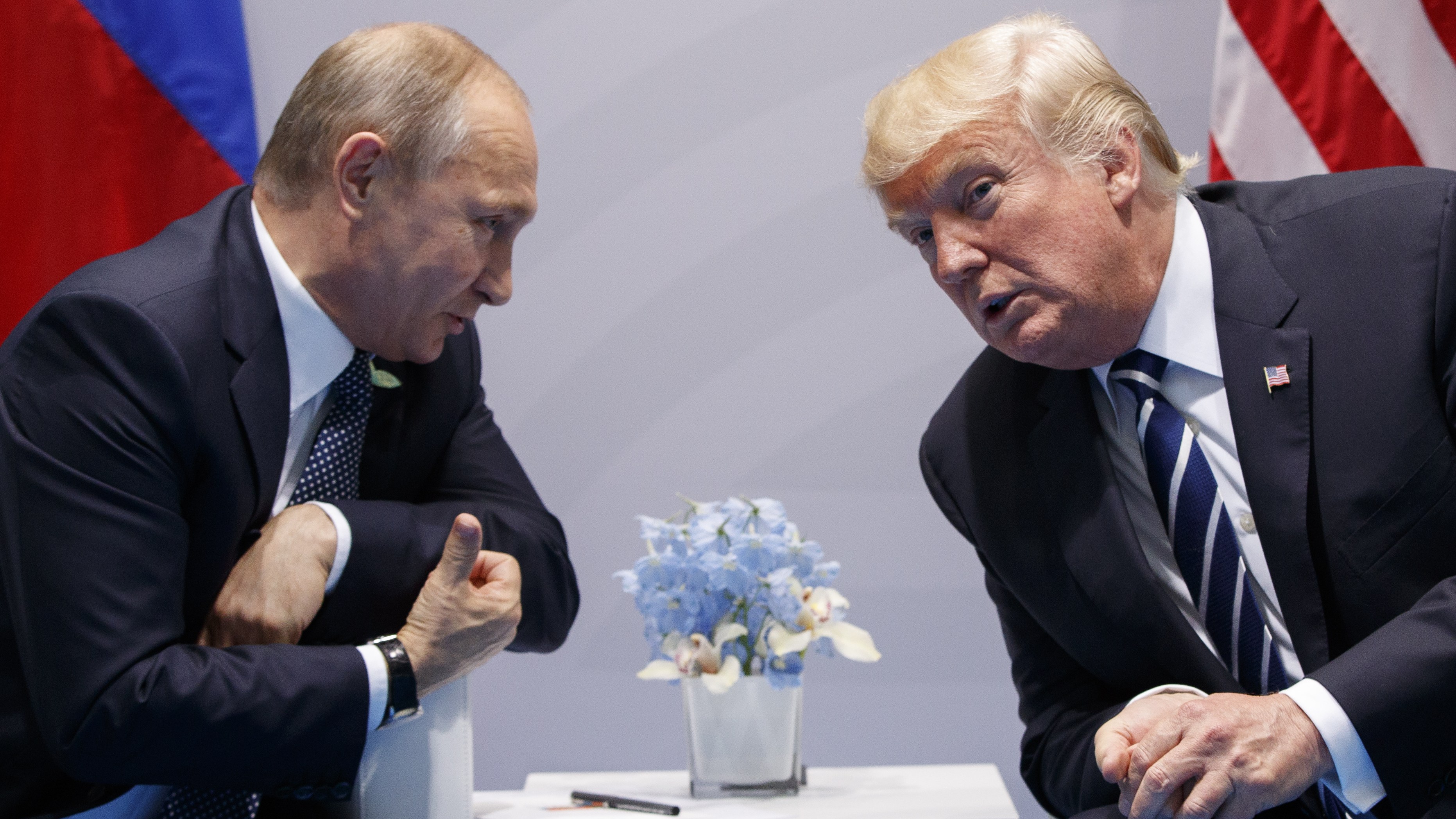 Some positive news for Donald Trump in Russian Federation probe at least?