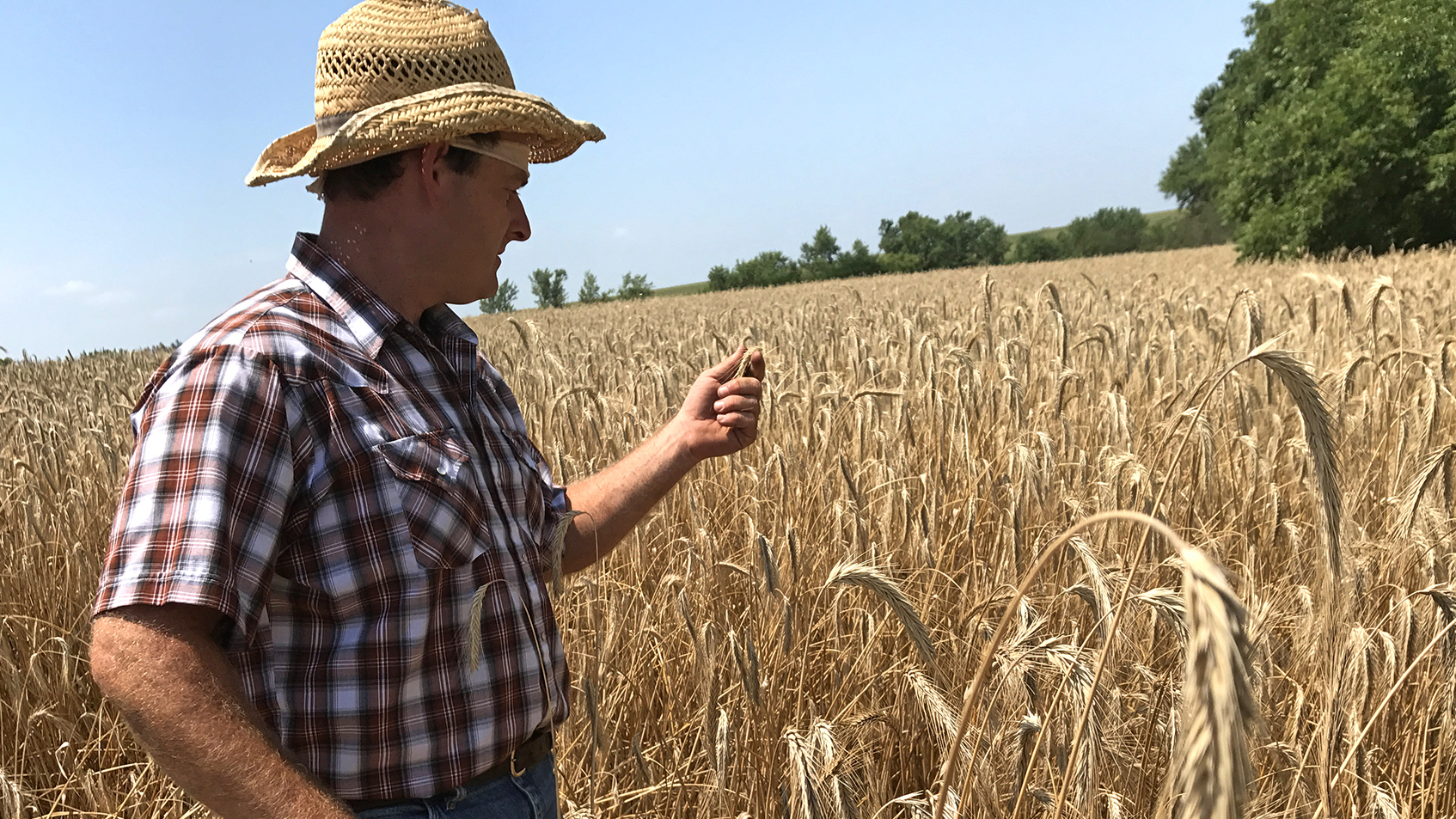 Does 'Sustainability' Help The Environment Or Just Agriculture's Public Image