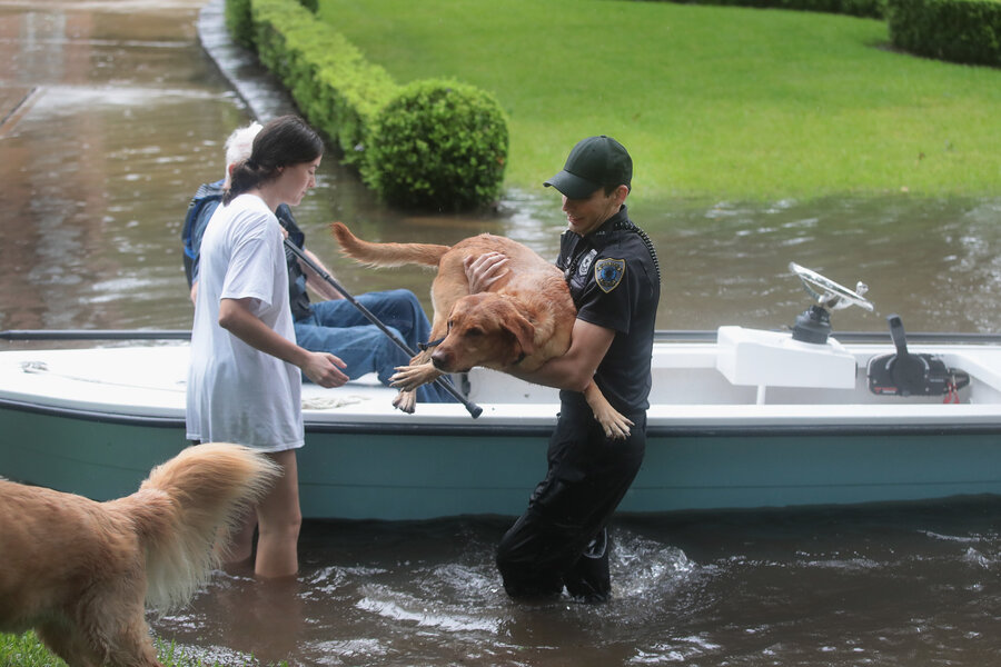 Texans Lend A Helping Hand During Houston Floods Continue The - Some people tied their dogs up and left them to die during the flood