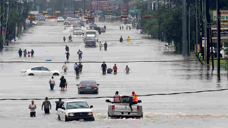 Here's How You Can Help People Affected By Harvey