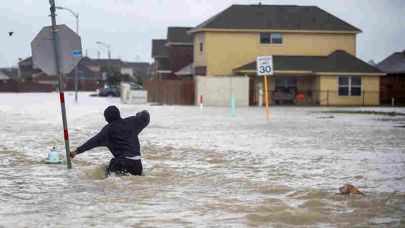How A Warmer Climate Helped Shape Harvey