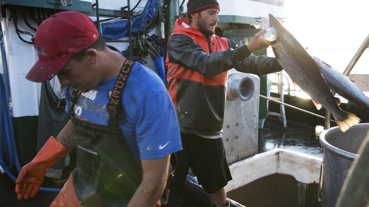Salmon Fisher Spill Is Dangerous And We Shouldn T Have To