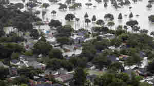 Harvey's Deadly Toll: The Victims Of Texas' Devastating Floods