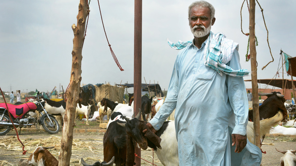 Ghulam Siddique, a goat herder from Pakistan