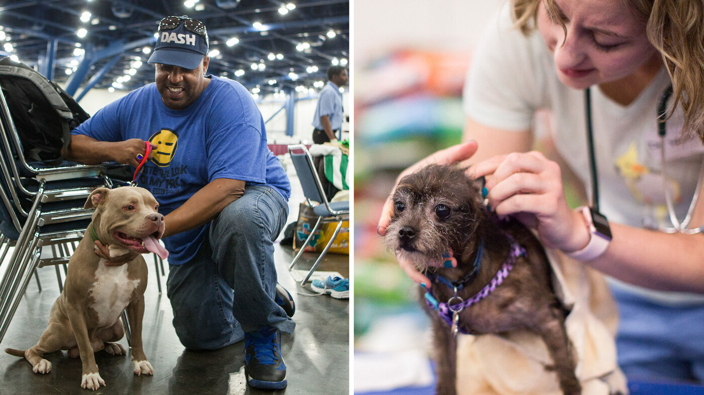 Houston Shelter Offers Respite For Pets And Their Owners