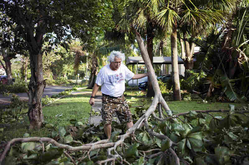 Jun Bolisay, 62, a Miami resident for 27 years, begins to clean up his yard on Monday morning after Hurricane Irma passed through the area. The hurricane made landfall in the Florida Keys as a Category 4 storm on Sunday, lashing the state with 130 mph winds as it moved up Florida's west coast.