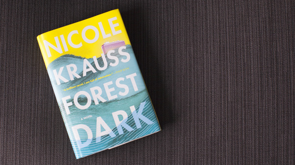 The Pleasures Of Story Get Lost In This 'Forest Dark'