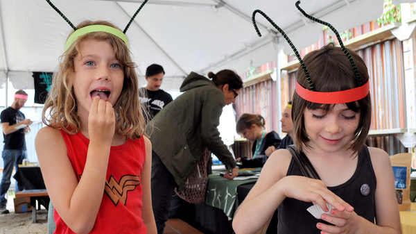 "Tennesee Nydegger-Sandidge, left, and Holly Hook try chowing down on some crickets. ""People should eat them because they"