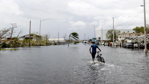 A man wades on the water while pushing his bicycle through a flooded street in the aftermath of Hurricane Maria in Catano, Puerto Rico, Friday.