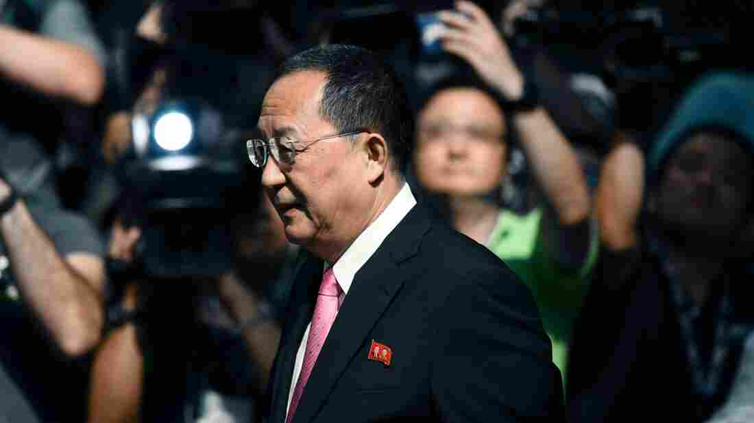 North Korea FM says Trump has declared war on his country