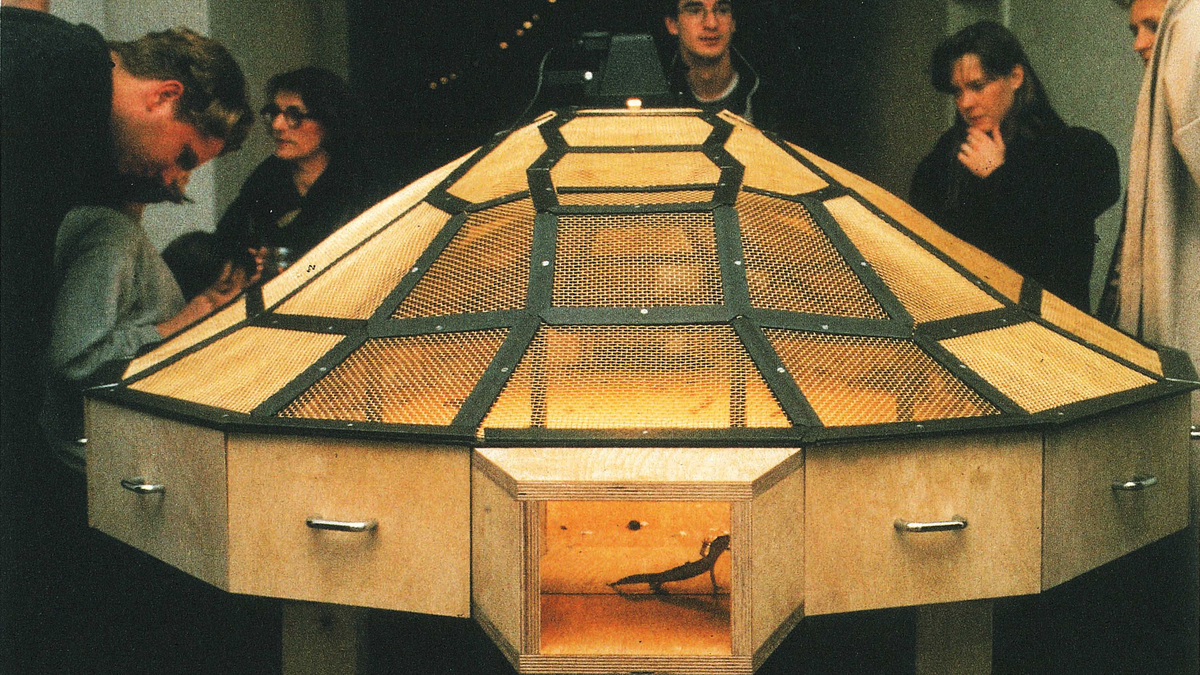 Citing Threats, Guggenheim Pulls 3 Works Involving Animals From ...