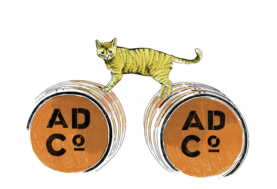 Distillery cat wanted must be affable brand boosting cold y held a press conference at albany distilling co this ginger colored distillery cat stole the show by hopping up on a barrel next to the podium ccuart Image collections