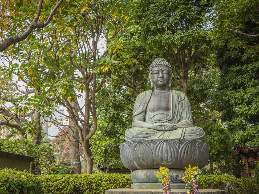 In his new book, Robert Wright wants to focus on Buddhism's diagnosis of the human condition, as opposed to the traditional aspects of Buddhism as a religion.