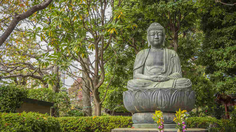 Why 'Why Buddhism Is True' Is True