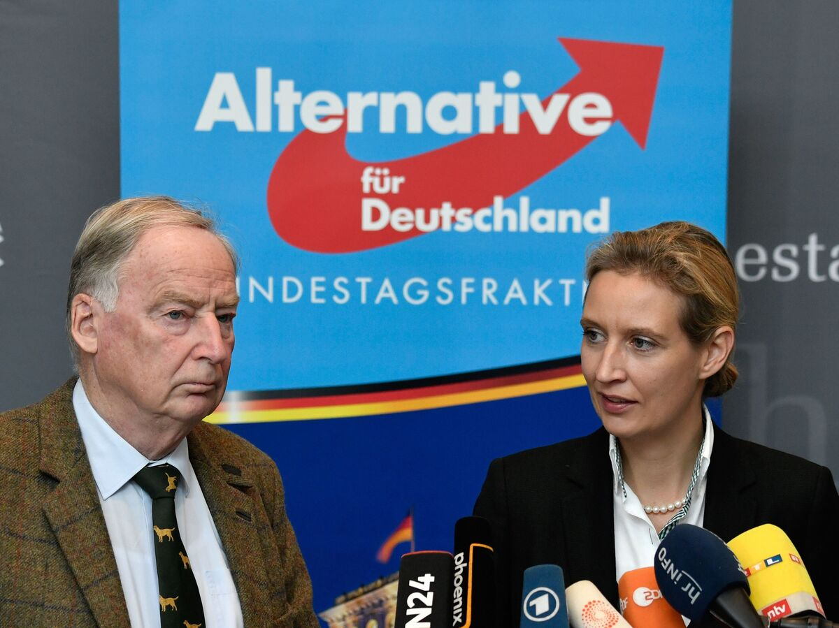 What do the Alternative for Germany (AfD) stand for