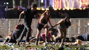 Classifying Attacks: Mental Illness Or Terrorism?