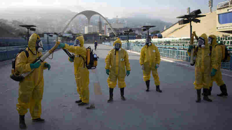 Mosquito-Borne Diseases Found In U.S. Athletes And Staff At Rio Olympics