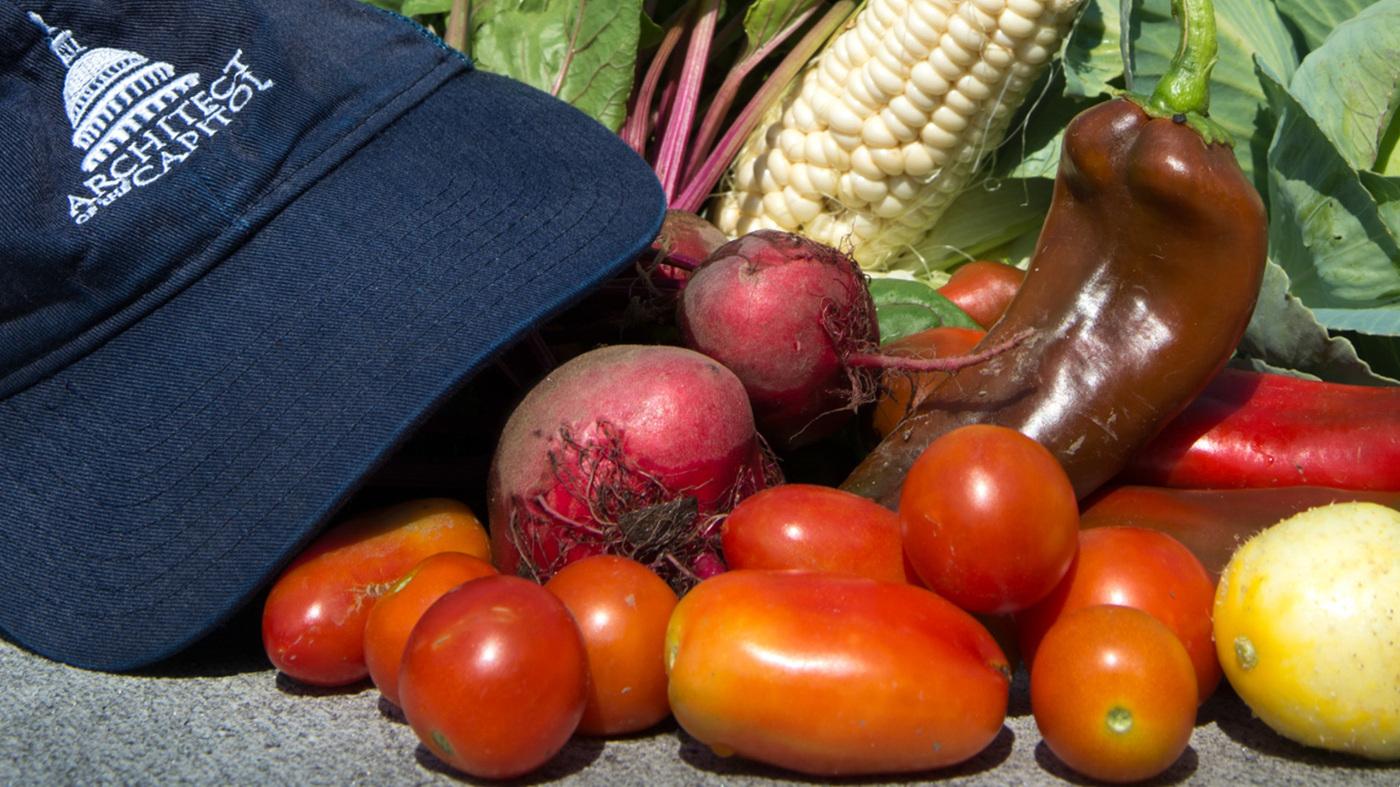 historical veggies take root in dc war garden the salt npr