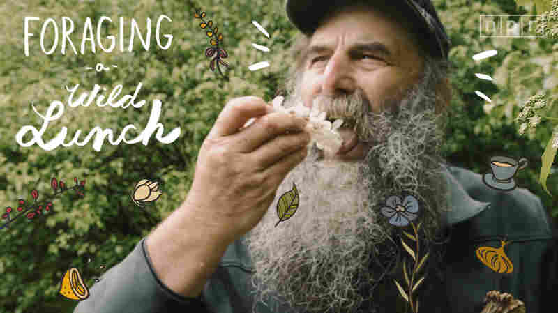 VIDEO: Harvesting A Wild Lunch With A Master Forager