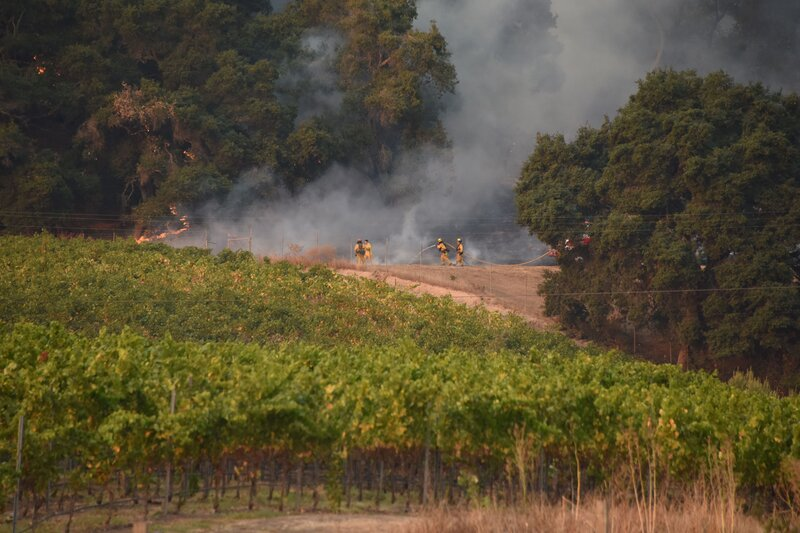"Firefighters protect a vineyard in Santa Rosa, Calif., on Wednesday. Ken Pimlott, the chief of the California Department of Forestry and Fire Protection, called the of fires ""a serious, critical, catastrophic event."""