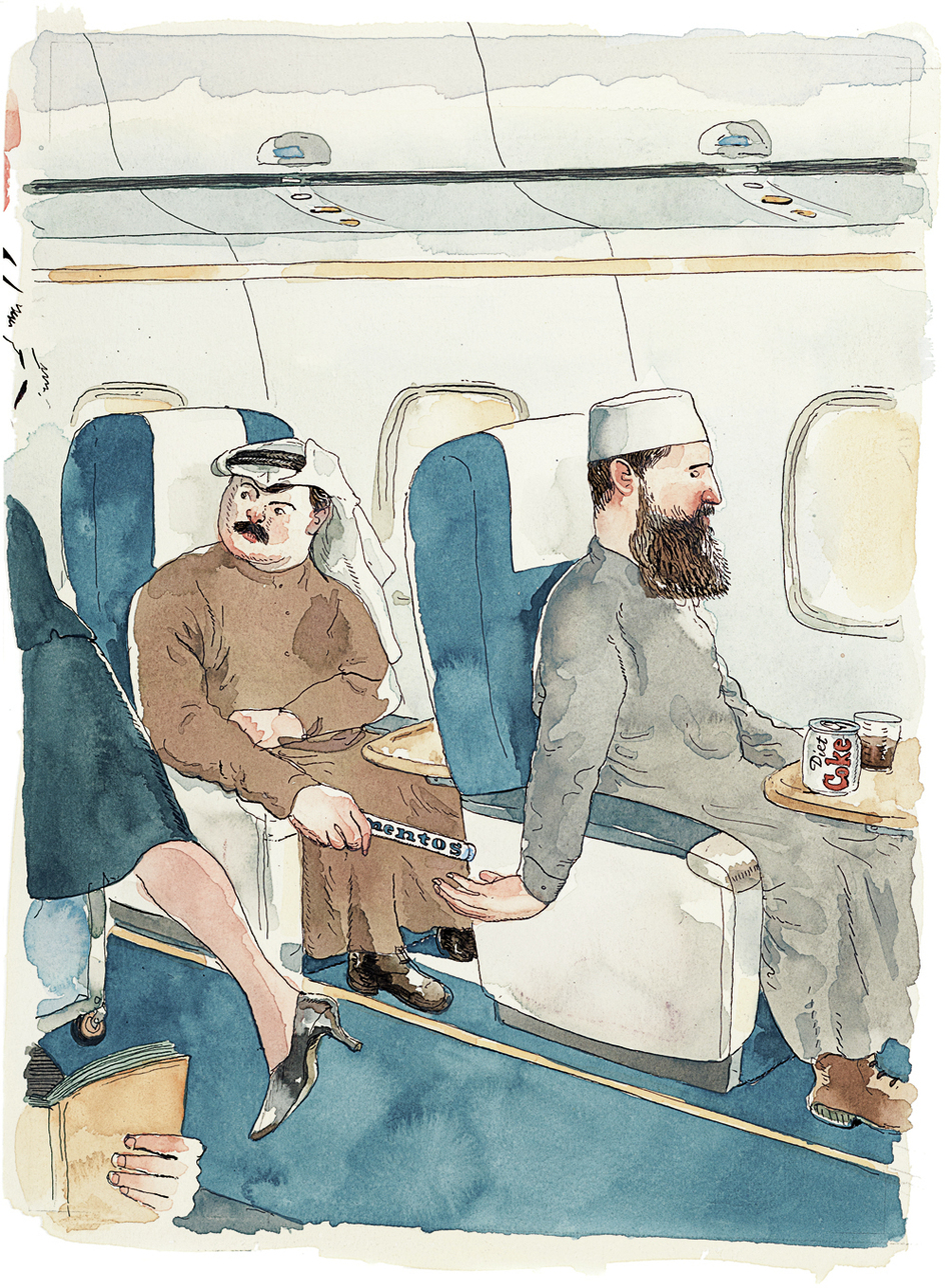 Картинки приколы самолетами