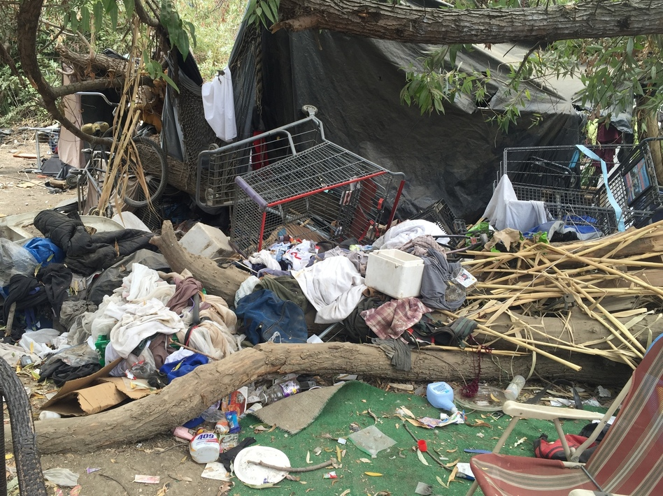 The latest homeless count showed a 64 percent increase in the number of 18- to 24-year-olds on the streets over last year. Authorities are better at counting them but the problem is also getting worse. (Anna Scott/KCRW)