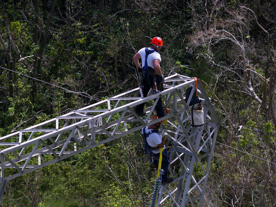 Whitefish Energy workers restore power lines damaged in Barceloneta, Puerto Rico, on Oct. 15. Gov. Ricardo Rosselló has ordered an audit of the $300 million deal the island's power authority made with Whitefish. (Ramon Espinosa/AP)