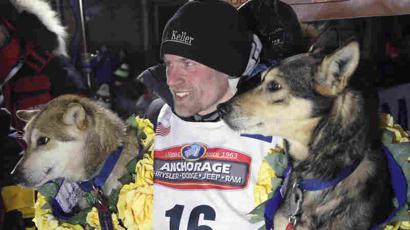 Iditarod Names Four-Time Champ Dallas Seavey In Dog Doping Scandal