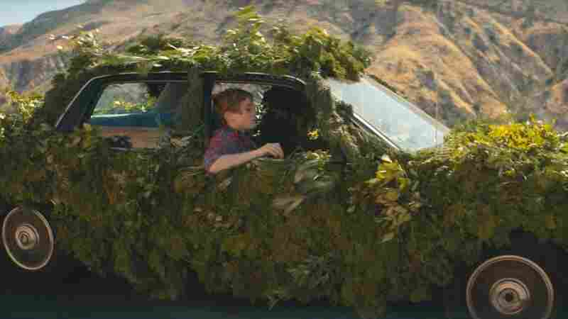 Sophia Lillis And Plant-Man On The Road In The War On Drugs' 'Nothing To Find'