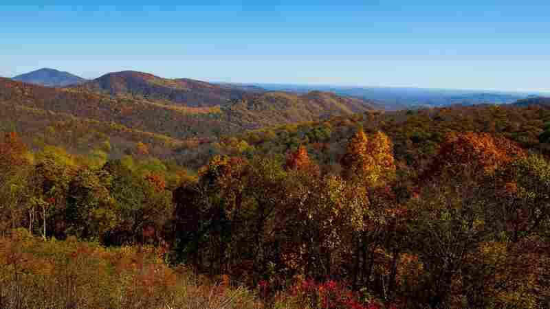 Fees To Enter Popular National Parks Would Skyrocket Under Interior Department Plan