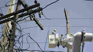 Puerto Rico's Power Authority Cancels Controversial Whitefish Contract